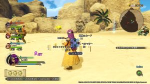 Dragon-Quest-Heroes-2-5
