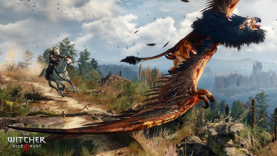 The Witcher 3 : 25h de jeu en speedrun