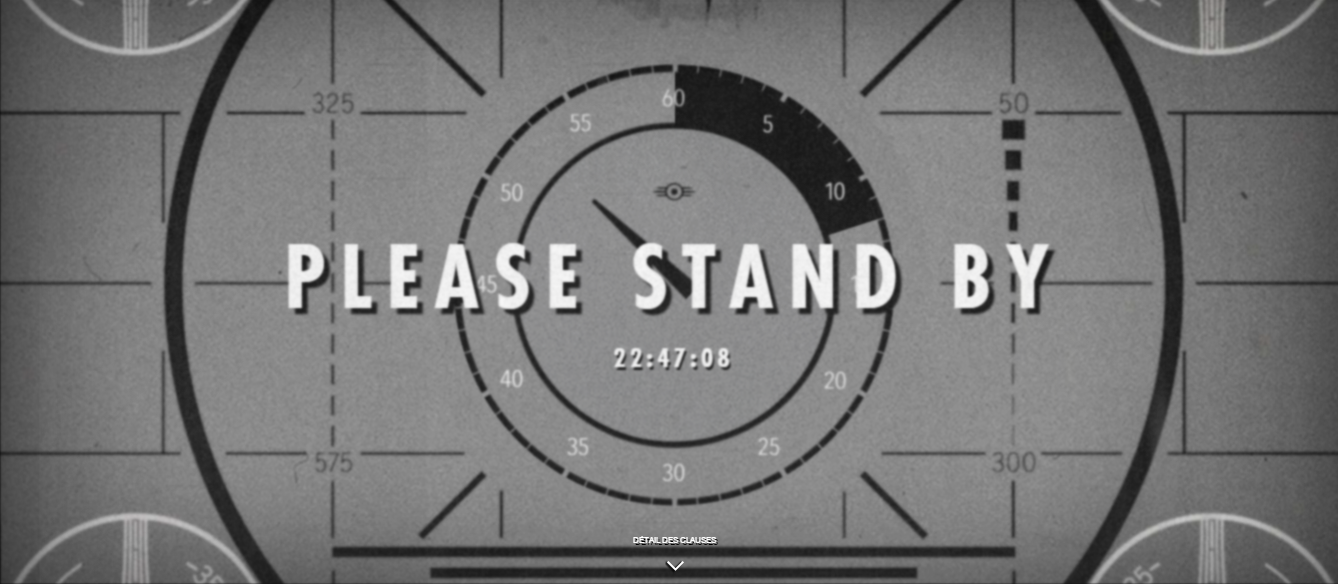 Fallout 4 Stand By