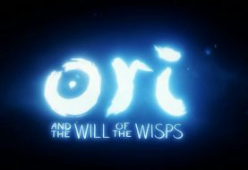 Ori and the Will of the Wisps fuite avant l'heure