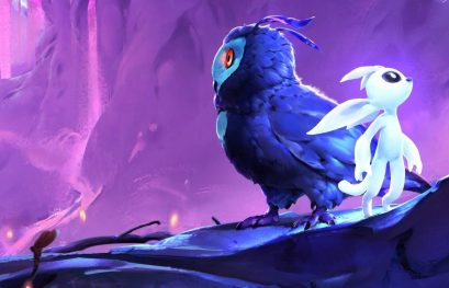 Ori and the Blind Forest: Definitive Edition et Ori and the Will of the Wisps arrivent en version physique sur Nintendo Switch